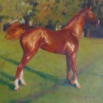 Red Stallion